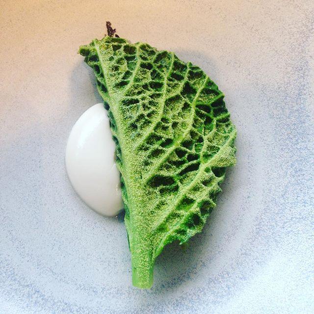 Sous le chou, de l'huître... Et des trésors fermentés de l'île de Bornholm grâce au talent de @nicolaikadeau #copenhague #kadeau #gastroart #copenhagen