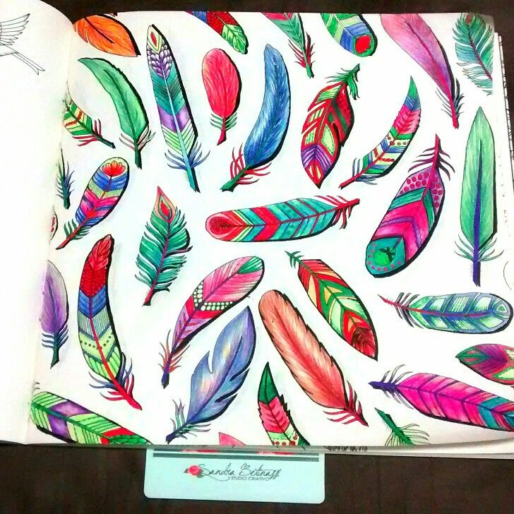 Feather Enchanted Forest By Juliana Queiroz Wwwsandrabetinassibr Instagram Sandrabetinassi Adult ColoringColoring BooksColouringColored