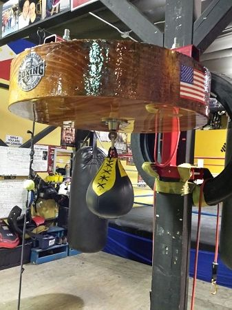 Professional Speed Bag Platform Heavy Duty Made In U S A