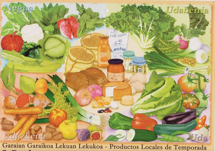 Calendario 2005 para Ekonekazaritza por Patricia Pérez Redondo