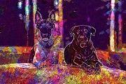 """New artwork for sale! - """" Dog Dogs Rottweiler German Shepherd  by PixBreak Art """" - http://ift.tt/2v5OMAV"""