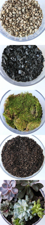best coffee jars images on pinterest succulent terrarium