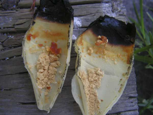 how to make ear wax candles