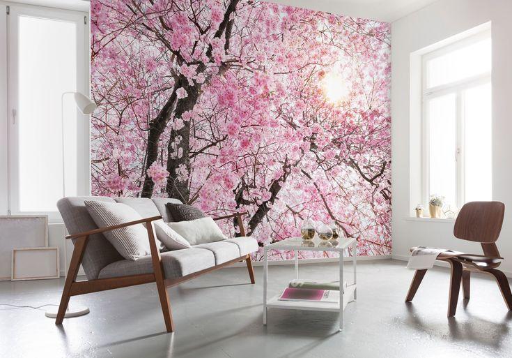 Papier peint XXL de chez Komar modèle Bloom