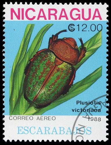 Nicaragua, 1988