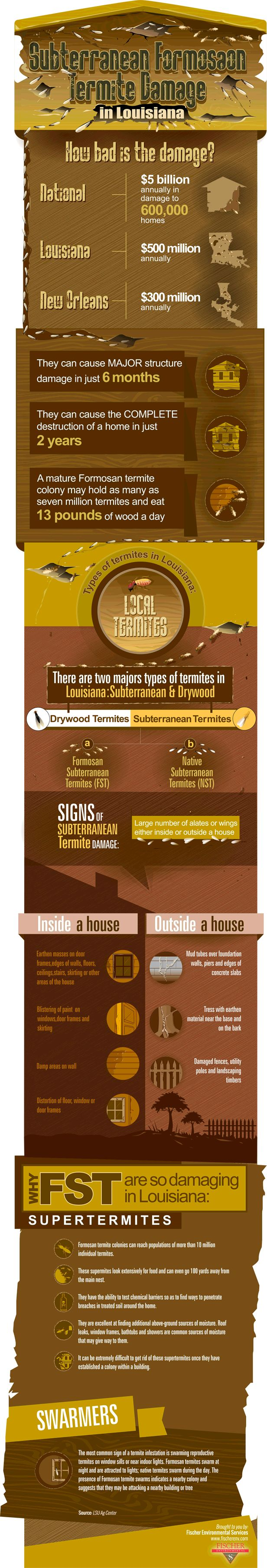 Louisiana Termite Damage - This infographic shows the damage caused by Subterranean Formosan termites in Louisiana, the types of termites found in Louisiana and common sings you might have a termite infestation. For more info, visit http://www.fischerenv.com/free-infographic-termite-damage-in-louisiana
