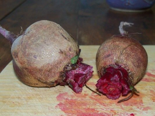 Beets: A Healthy Bile Builder | Divine Health