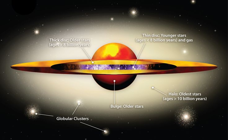 Diagram showing the components of a galaxy such as Andromeda