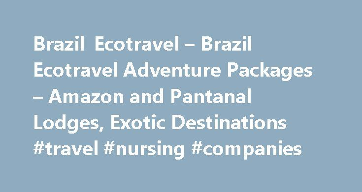 Brazil Ecotravel – Brazil Ecotravel Adventure Packages – Amazon and Pantanal Lodges, Exotic Destinations #travel #nursing #companies http://remmont.com/brazil-ecotravel-brazil-ecotravel-adventure-packages-amazon-and-pantanal-lodges-exotic-destinations-travel-nursing-companies/  #eco travel # Travel Vacations to Brazil. Tour Packages, Discount Flight Tickets, Hotel Reservations, Brazil Air Pass, South America Pass, Amazon and Pantanal Lodges Here you find some suggestions of Eco Packages in…
