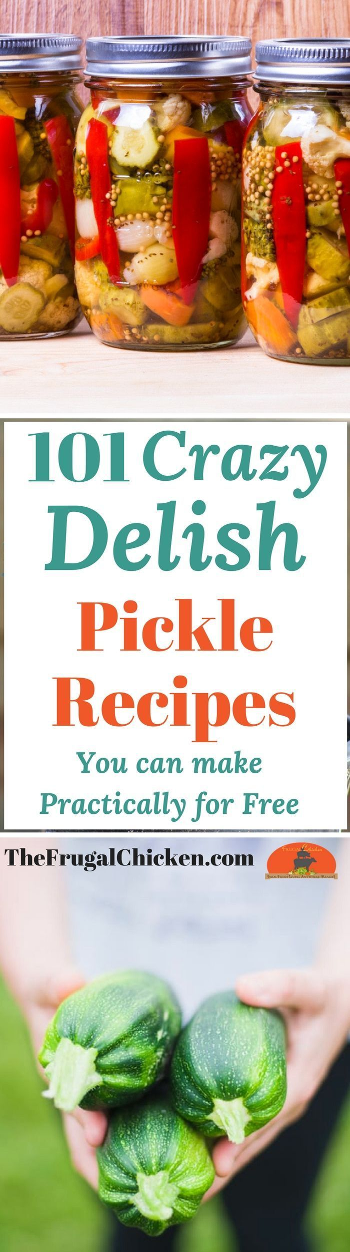 Pickles are super healthy for your gut & immune system, and luckily, they're also super yummy AND FRUGAL! Here's 101 pickles that even your kids will love!