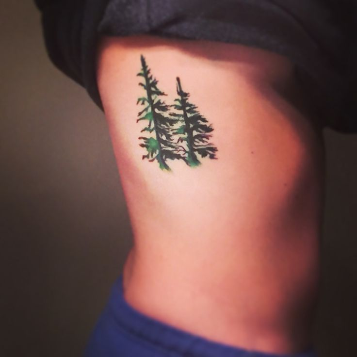 The 25 best evergreen tattoo ideas on pinterest for Evergreen tree tattoo