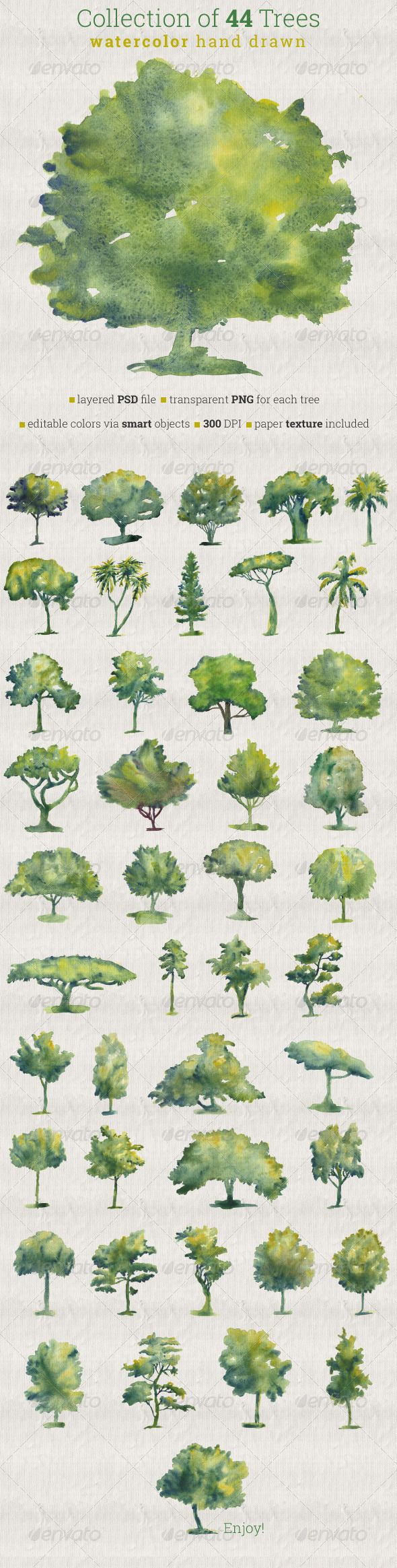 Collection of 44 Watercolor Trees