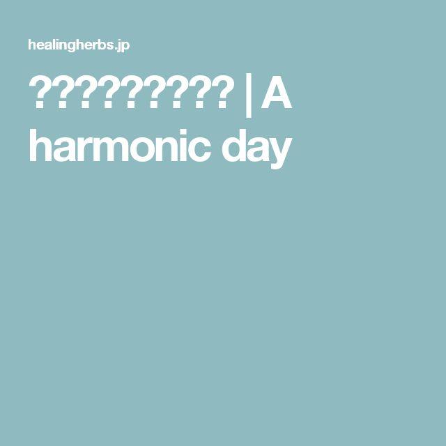 発酵豆乳マヨネーズ | A harmonic day