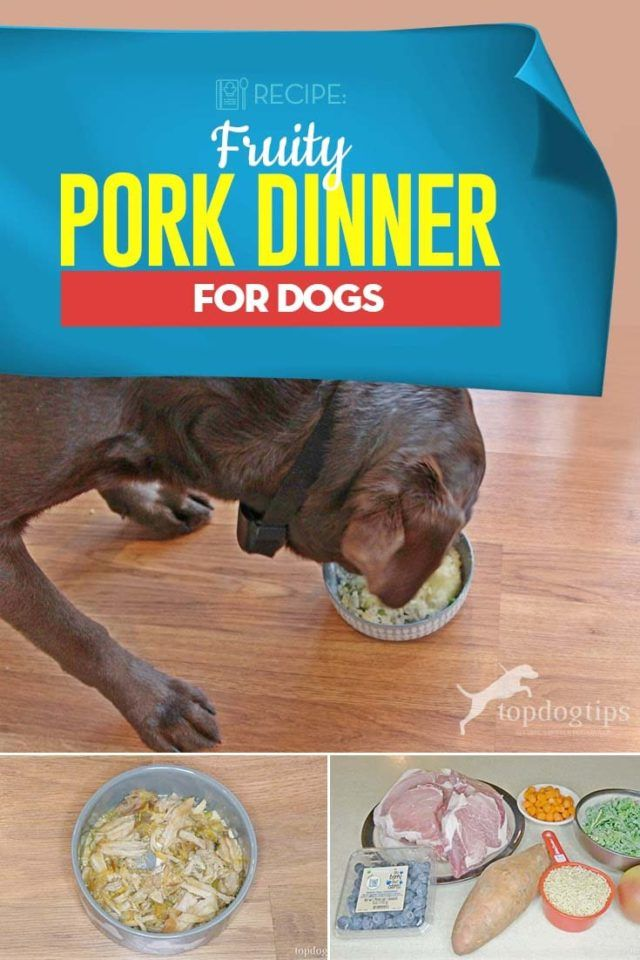 Recipe Fruity Pork Dinner For Dogs Dog Breakfast Dog Food