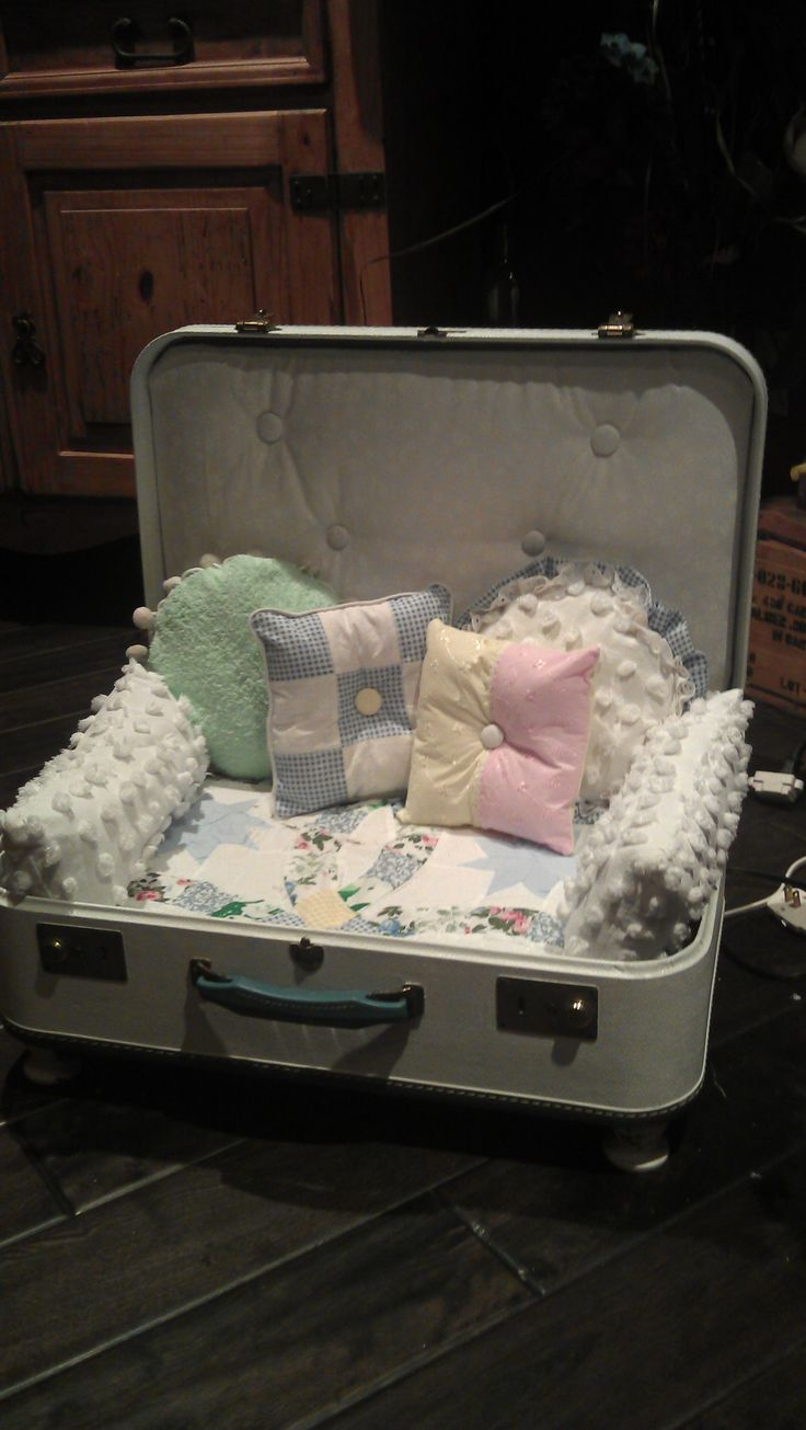 doggy suitcase bed<<< this is soo cute!!! U could also use it for like a doll bed or something