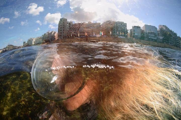 Última jornada y ganadores del Fotosub 2013 en La Playa de Las Canteras