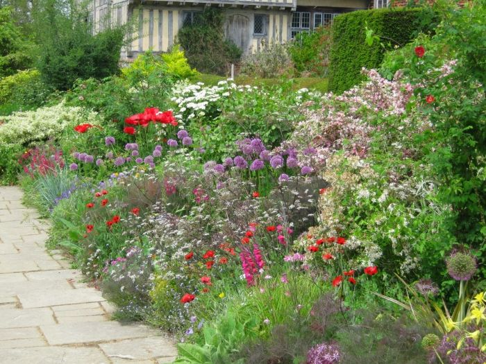 Mixed border planting style typical mixed border plants for Grasses for garden borders