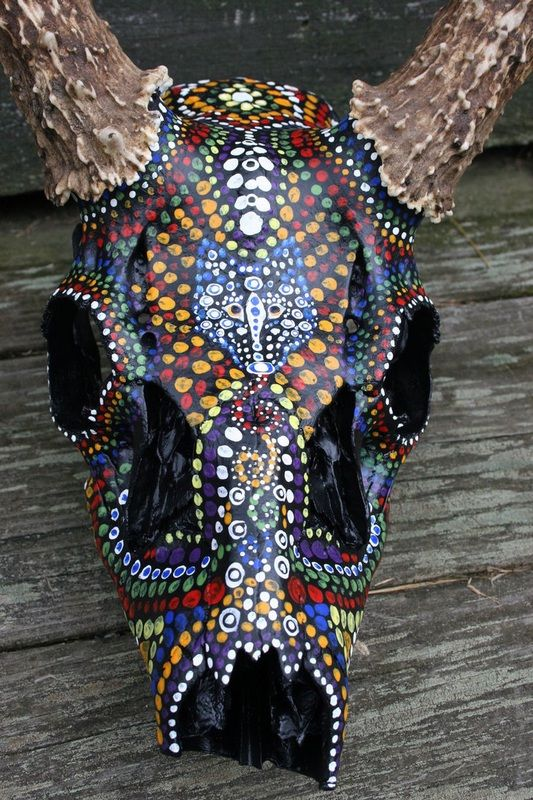 Best 25 Painted Animal Skulls Ideas On Pinterest Cow