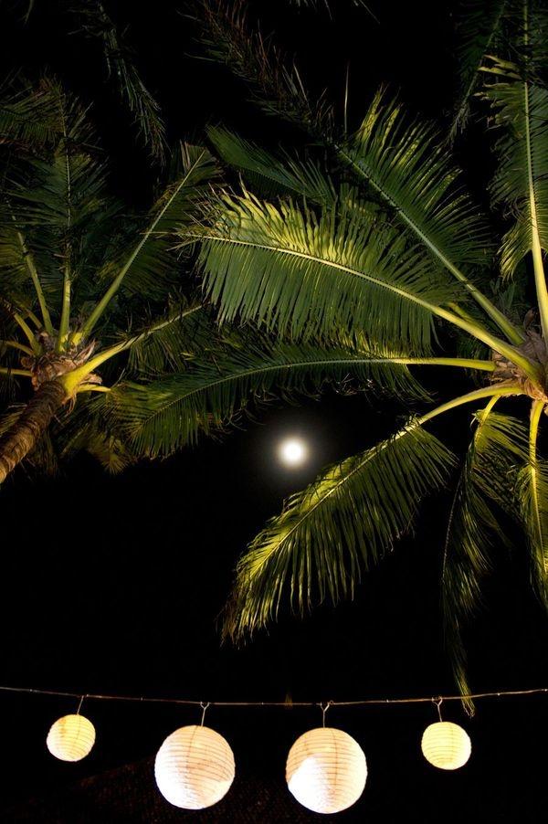 lanterns and moonlight