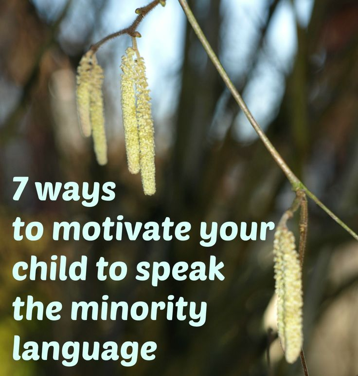 7 ways to motivate your child to speak the minority language Professional and Personal Spanish Online Courses for Children and Teenagers, guided by Spanish native teachers in Spain. www.spanish-school-herradura.com/online-spanish