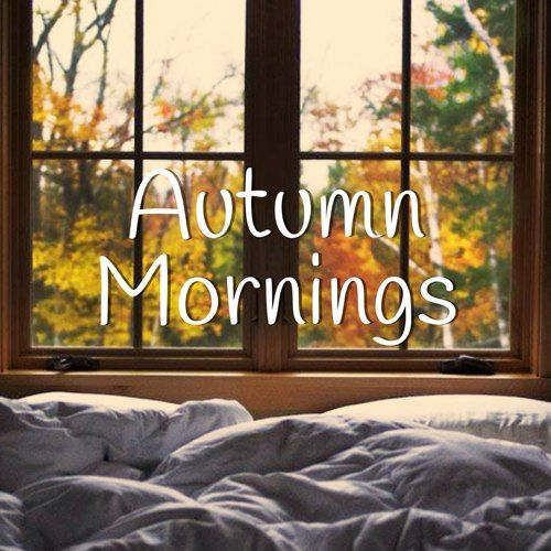 LAZY DAZE....waking up with a day of rambling and autumn adventure ahead of me!!! (rebbystarbucks)