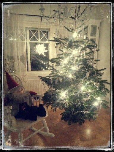 Väinö and Christmas tree