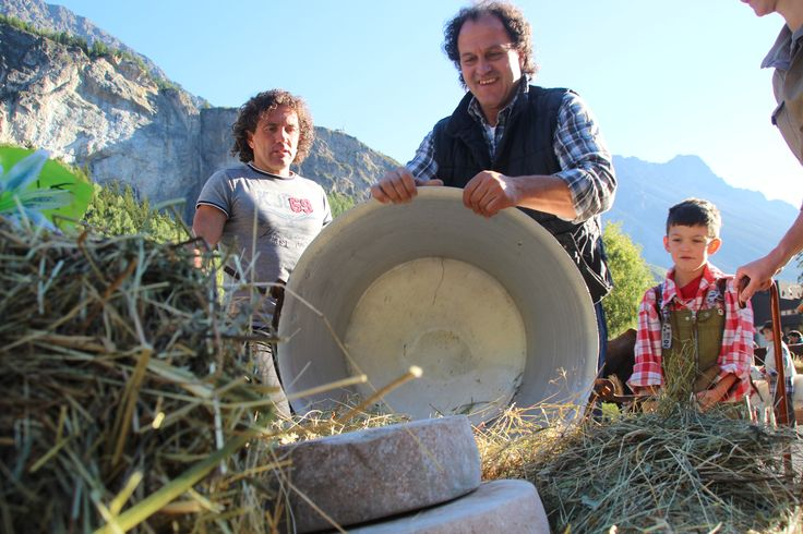 #valdidentromountainfeast #VMF #cheese #Valdidentro #aldidelabronza PH. Loris Galli Graficando