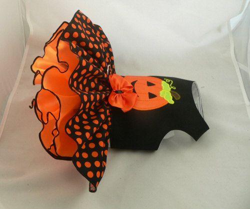 Vestido de perro. Linterna de Halloween por Poshdog. por poshdog
