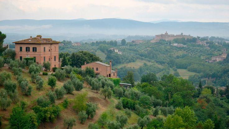 Heiße Quellen, sanfte Hügel mit Olivenhainen, Zypressenalleen und kleine Dörfer aus gelbem Tuffstein prägen die südliche Toskana. In dieser traumhaften Kulturlandschaft ist Tamina Kallert zwischen Siena und Grosseto unterwegs.
