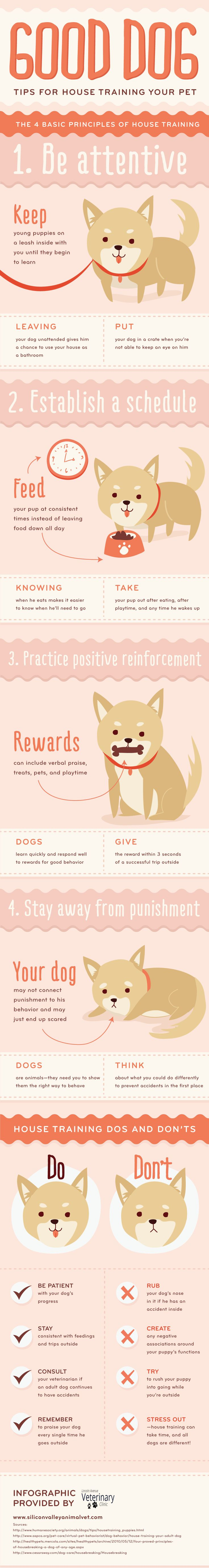 Good-Dog-Tips-For-House-Training-Your-Pet-Infographic