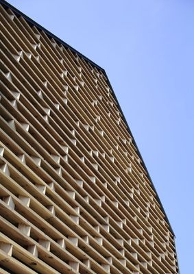 Timber perforated building skin
