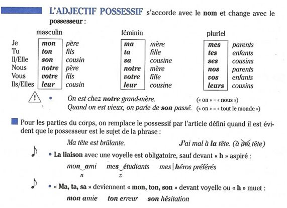 adjectifs possessif fle grammaire adjectifs pinterest. Black Bedroom Furniture Sets. Home Design Ideas