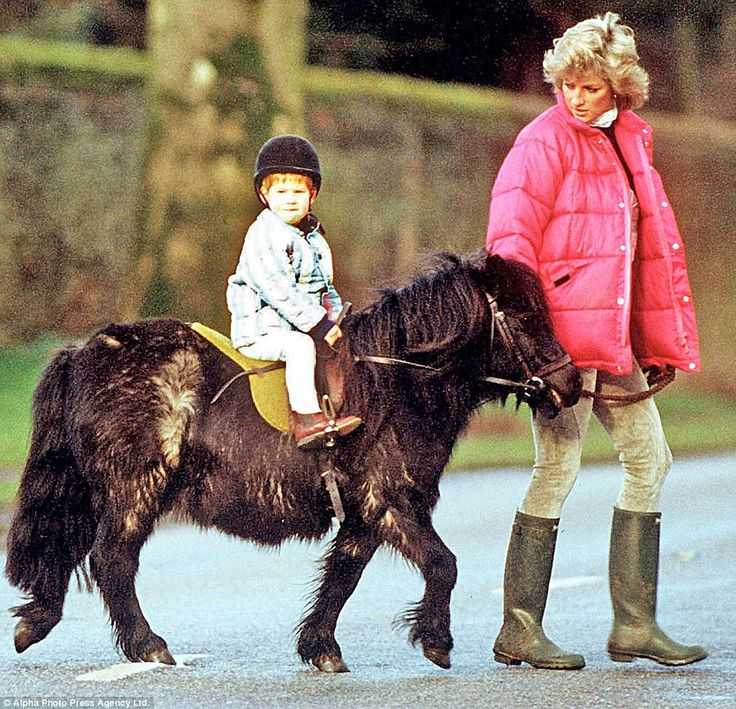 Pictured, Prince Harry enjoys a pony ride  on the Sandringham Estate under the watchful eye of his mother Princess Diana