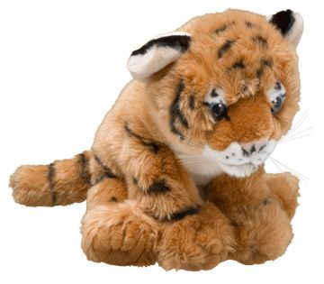 Adopt a tiger | Symbolic animal adoptions from WWF