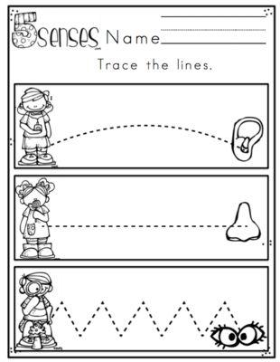 Preschool Packet 5 Senses - No Prep