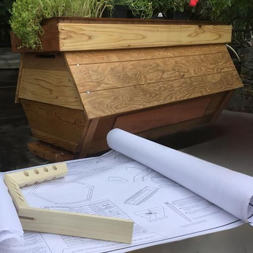 The Cathedral Hive Bee Plans