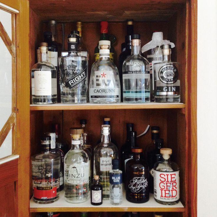 Eine kleine Ginsammlung für einen gepflegten Gin Tonic am Abend.
