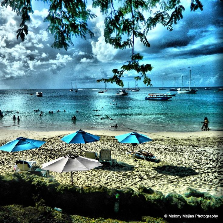 180 Best Images About Trinidad And Tobago On Pinterest