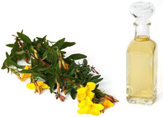 Evening primrose oil is one of the most miraculous discoveries to prevent many diseases and disorders. It contains Vitamin C and phenylalanine which are useful in relieving pain, headaches, aging problems, and signs of menopause, obesity, PMS, and many more.