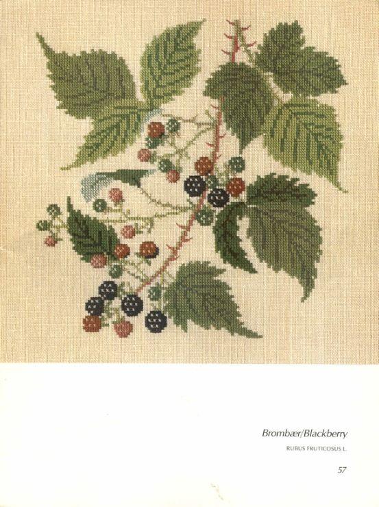 Gallery.ru / Фото #105 - Книга с яблоневой веткой на обложке - Mosca
