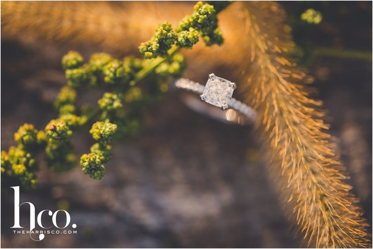 engagement rings | ring bling | princess cut | diamonds| engagement rocks | Romantic engagement shoot | rustic field| country engagement session | Albany International Airport engagement session| plane engagement pics| photo by makayla jade of the harris company