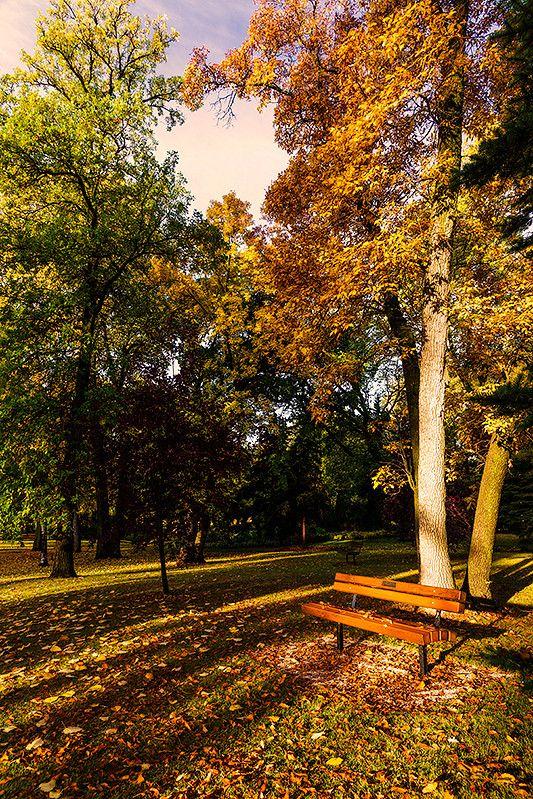 A Change Of Seasons by Nebojsa Novakovic on 500px