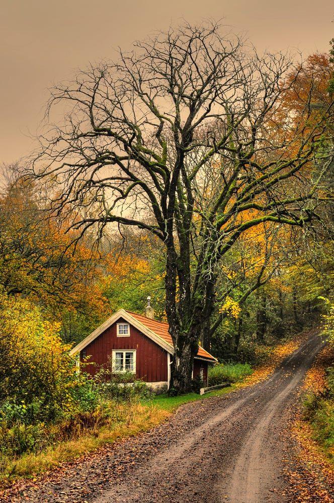 Autumn at the cottage (Sweden) by Klas Almqvist on 500px