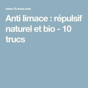 Anti limace : répulsif naturel et bio - 10 trucs