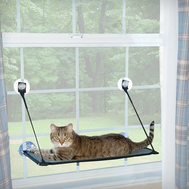 KandH Manufacturing Kitty Sill Ez Window Mount   : Cats furniture