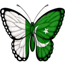 Image result for pakistan flag 3d wallpapers