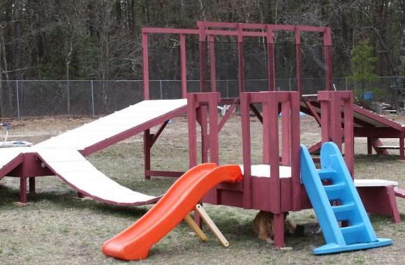 the only dogie jungle gymplay station in the usa