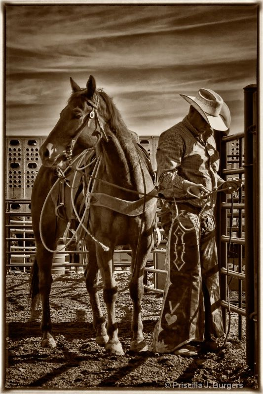 Cutting western quarter paint horse appaloosa equine tack cowboy cowgirl rodeo ranch show ponypleasure barrel racing pole bending saddle bronc gymkhana