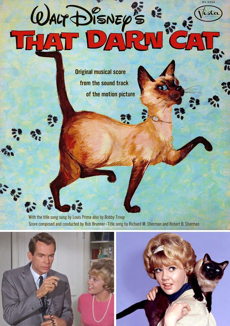 Walt Disney's That Darn Cat! (1965) starring Hayley Mills & Dean Jones — Soundtrack LP Cover