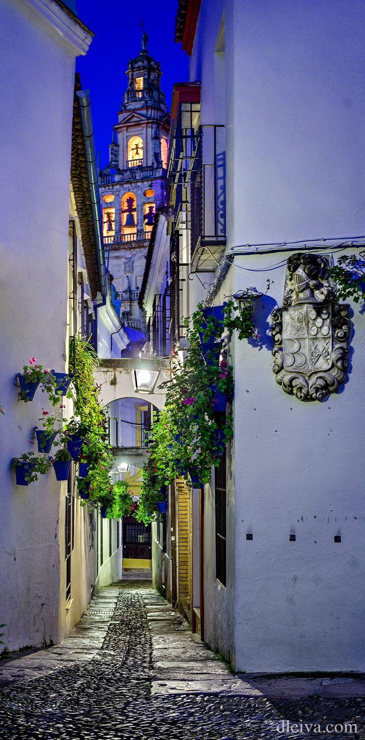 "<a href=""http://www.flickr.com/photos/dleiva/sets/72157632919752059/show/"">Para ver mi colección ""Córdoba"" pulsa aquí</a>"